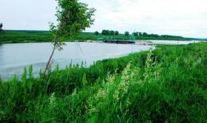 Продам участок 22 сот., земли поселений (ИЖС), 16 км до города