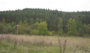 Продам участок 24 сот., земли поселений (ИЖС), 12 км до города