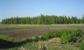 Продам участок 90 сот., земли поселений (ИЖС), 9 км до города