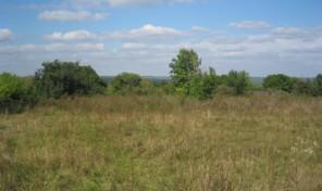 Продам участок 16.4 га, земли сельхозназначения (СНТ, ДНП), 8 км до города
