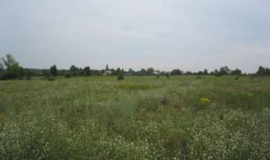 Продам участок 30 сот., земли поселений (ИЖС), 22 км до города